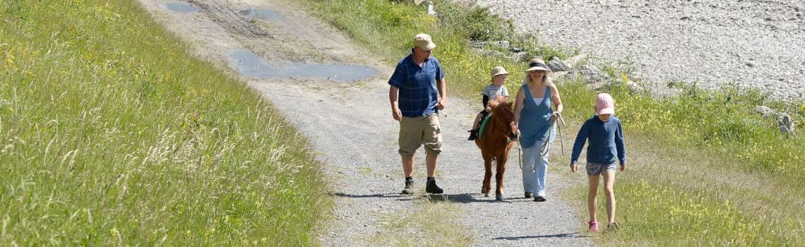 Pony Reiten Rhein-min